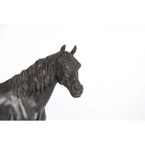 634 - AFTER P. J. MENE. AN EARLY 20th CENTURY PATINATED BRONZE SCULPTURE modelled as a stallion horse stan...