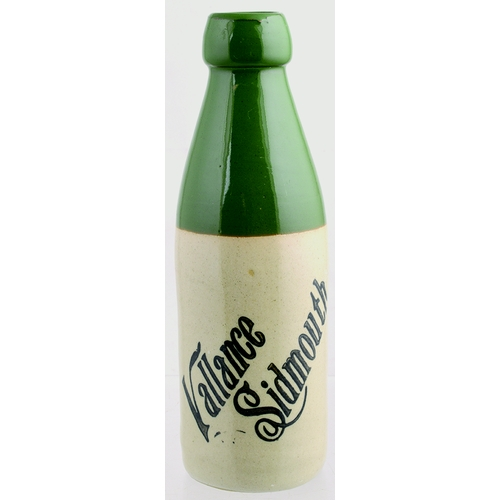 538 - SIDMOUTH GINER BEER BOTTLE. 8.25ins tall. As previous lot - this variant being ch, shape. Bourne Den...