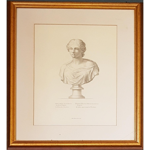 21 - A lovely set of six Italian Engravings of Roman Busts. 40 x 50cm....
