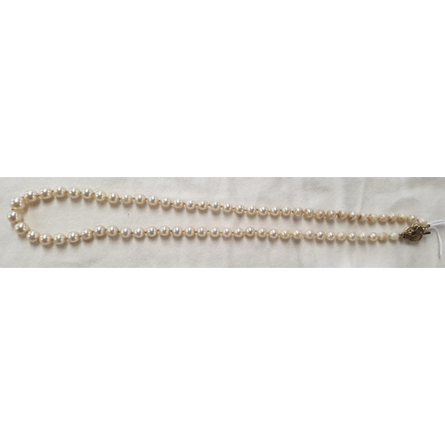 153w - A good cultured pearl Necklace with a gold and diamond clasp....
