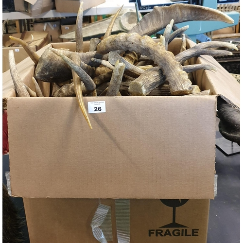 26 - A large quantity of natural looking Horns (props). (10)...