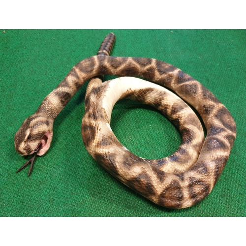 8 - A quantity of Taxidermy style props of Rattlesnakes. (Q) (3)....