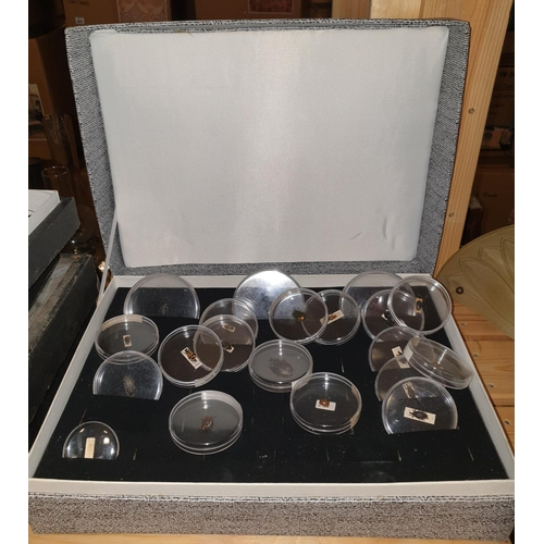 9 - A large quantity of cased and uncased Taxidermy of moths, shells, coral etc., most in original cases...