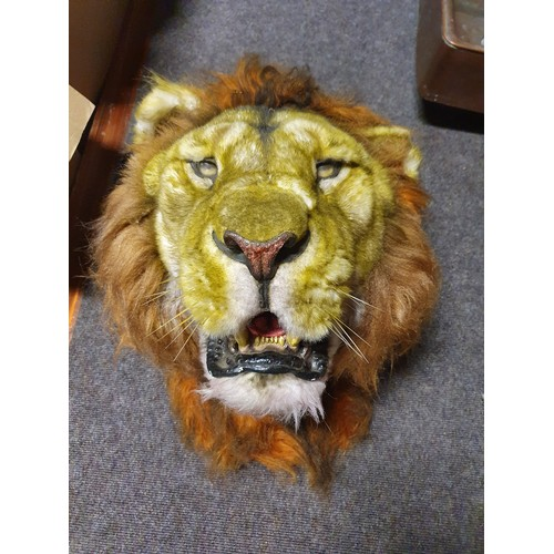 2 - A Taxidermy style prop of a Male Lion. In good condition. W 34 x H 55cm approx. (1) (1)....