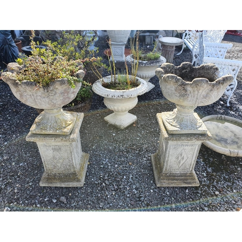 25 - A good pair of reconstituted Stone Urns on Stands. 90 H x 46 cms W...