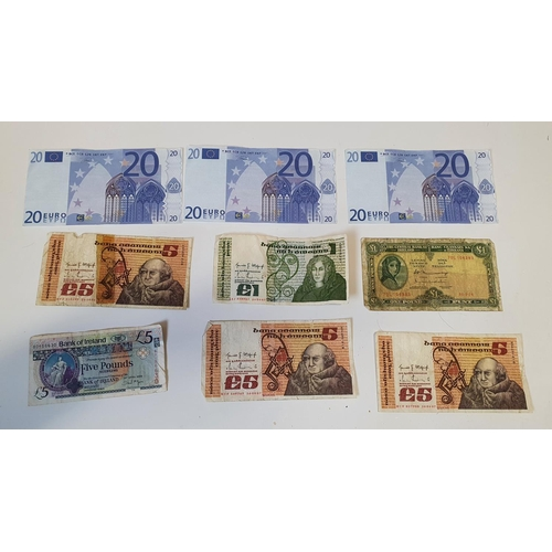 19 - A quantity of Irish Bank Notes and Euro Explanations.