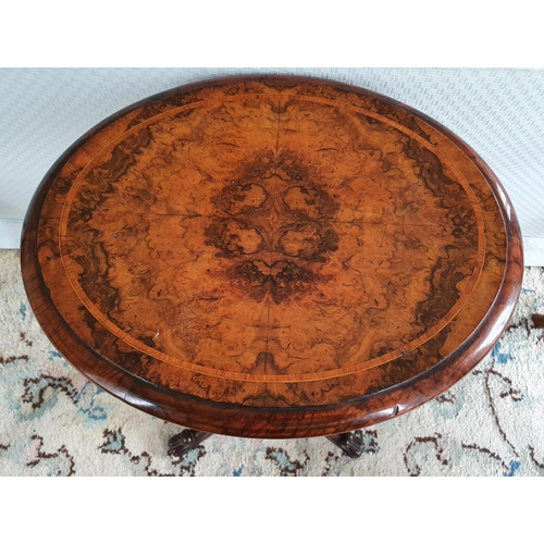14 - A Fabulous Walnut Inlaid oval Work Box on stand with highly reeded outline on turned carved supports...