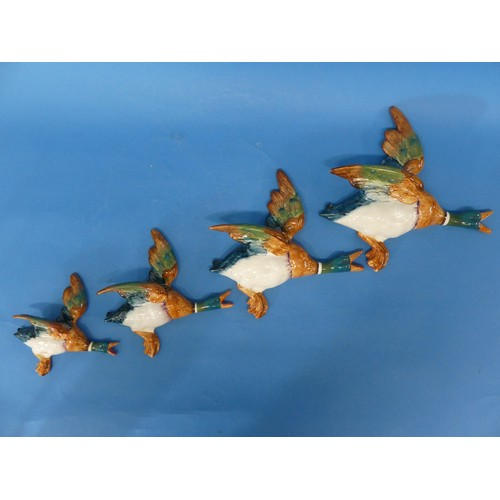 15 - A set of four Beswick Flying Ducks,graduating in size, one broken and repaired,the largest: 10in (...