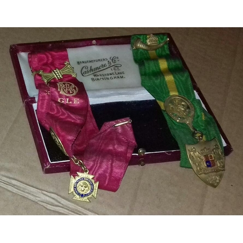 581 - 2 x Royal Order of the Buffaloes jewels on ribbons in Cashmore and Co Birmingham case...