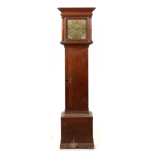 201 - A WELSH OAK THIRTY HOUR LONGCASE CLOCK, TIBBOT NEWTOWN, LATE 18TH C  the brass dial with date sector...