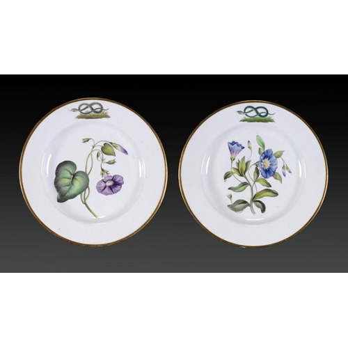 214 - A PAIR OF DERBY CRESTED BOTANICAL PLATES FROM THE DUKE OF DEVONSHIRE SERVICE, C1810-15  painted with...
