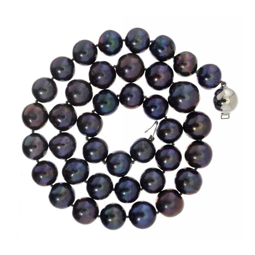 369 - <p>A BLACK CULTURED PEARL NECKLACE  of thirty nine cultured pearls ranging from 1.1 - 1.4cm, white g...