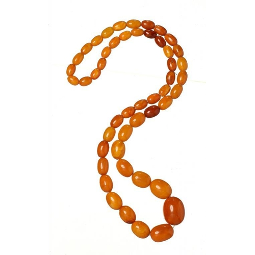 437 - <p>A NECKLACE OF 49 AMBER BEADS 38.7g</p><p></p>...