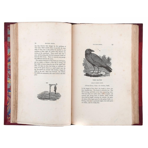 818 - <p>BEWICK (THOMAS) A HISTORY OF BRITISH BIRDS, 1826  8vo, [sixth edition] two vols, large paper,  wo...