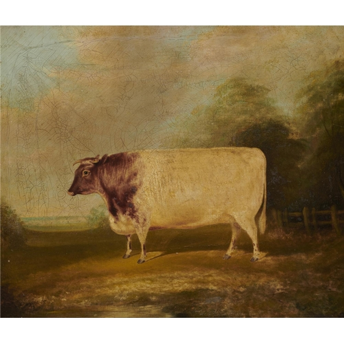 422 - <strong>BRITISH SCHOOL, EARLY 19TH C PORTRAIT OF A SHORTHORN COW IN A LANDSCAPE</strong>oil on can...