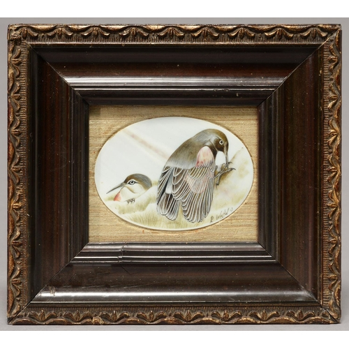 447 - BRITISH SCHOO (?), 19TH/EARLY 20TH C - OVAL IVORY MINIATURE  OF TWO BIRDS, INDISTINCTLY SIGNED R W.....