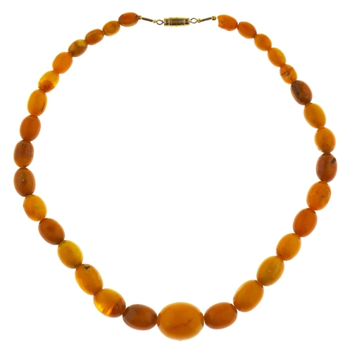 583 - A necklace of 32 amber beads, 25g