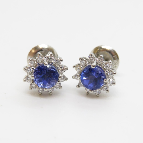 28 - Platinum diamond and sapphire earrings - central half carat sapphire with halo of diamonds fully HM