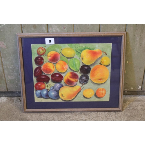 9 - Watercolour study of various summer fruits,signed with initials AT...
