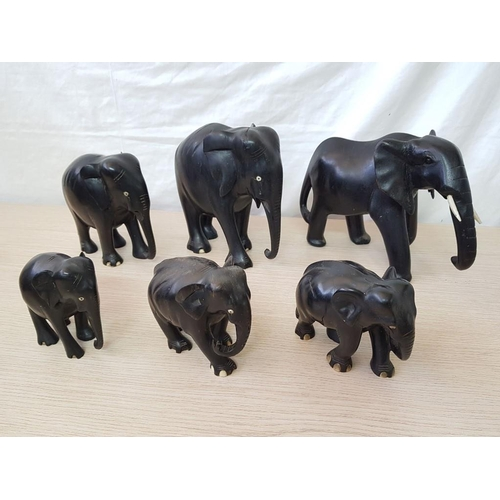 39 - Collection (Family!) of Carved Ebony Elephants (6)...