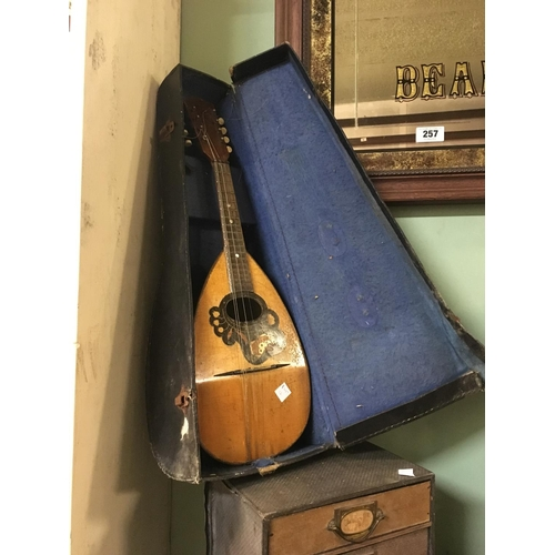 111 - Cased mandolin....