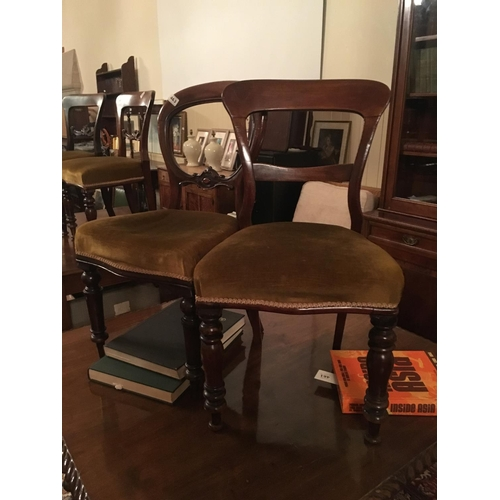 463 - 2 Victorian Mahogany dining chairs....