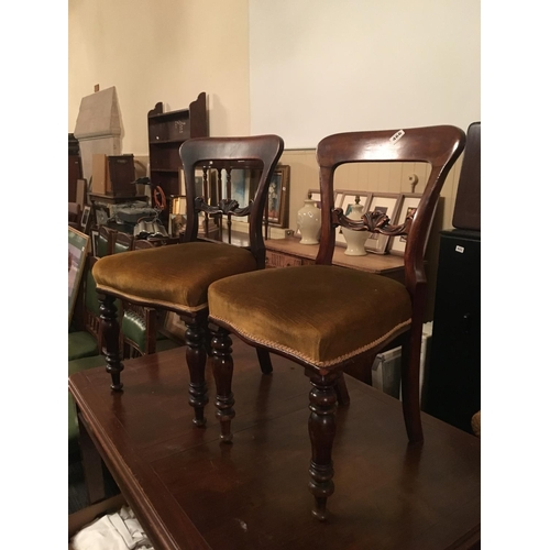 466 - Pair of Victorian mahogany chairs....