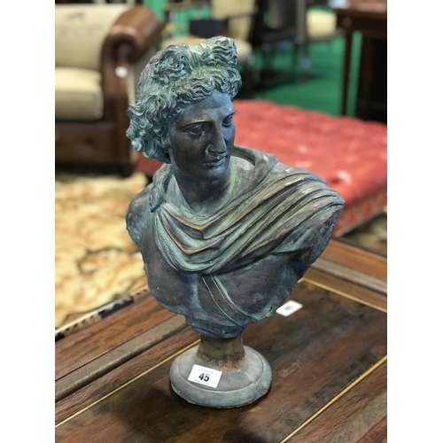 45 - Patinated bust of Apollo 14'' W x 21'' H...