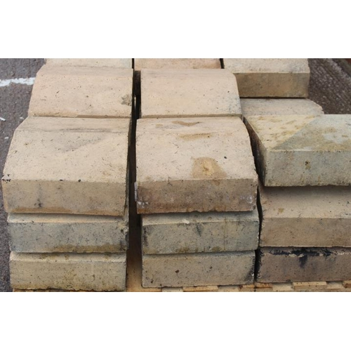 38 - Set of twenty six coping stones {100 cm H x 300 cm W x 360 cm D}....
