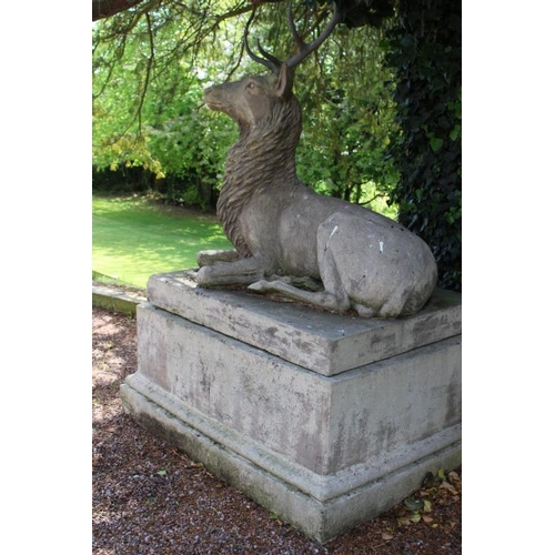 429 - Exceptional quality cast stone model of a seated stag with bronze antlers raised on plinth {220 cm H...