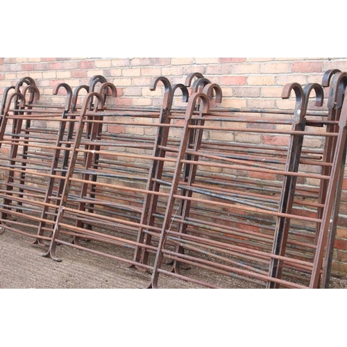 53 - Set of six steel gates or fencing with four hooks {130 cm H x 340 cm W each. }....