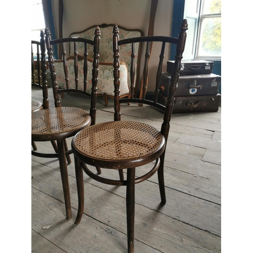 56 - Set of five bentwood chairs with bergere seats. { 94 cm H x 41 cm W x 38 cm D}....