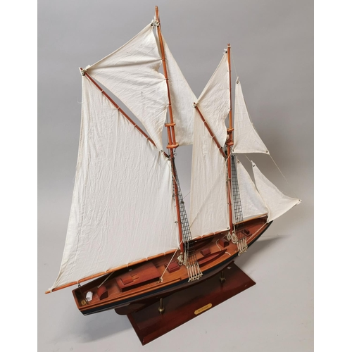 52 - Model of 19th C. yacht {79 cm H x 77 cm W x 23 cm D}.