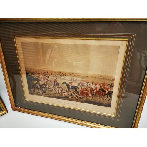 36 - Pair of coloured Hunting Prints mounted in gilt frames - Duorn Hunt. { 58 cm H X 79cm W }.