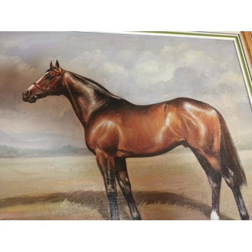 50 - F L Greere '85 The Stallion Oil on canvas mounted in a gilt frame { 58cm H X 68cm W }.