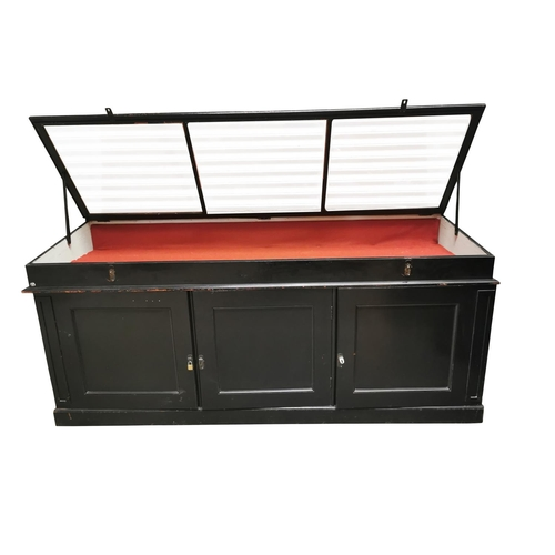 54 - Early 20th C. Museum cabinet the glazed lift up top enclosing a display area above 3 panel doors, ea...