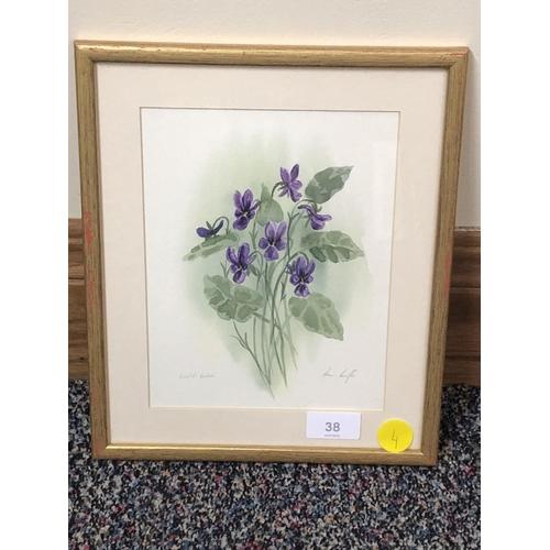 27 - Ann Lister watercolour Wild Violets...