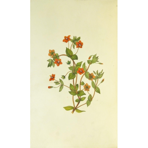 56 - Hey (Rebecca), THE MORAL OF FLOWERS�, FIRST EDITION, half-title 24 hand-coloured engraved plates, ti...