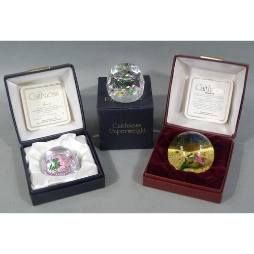 16 - A Caithness limited edition paperweight Rosebud by Terris no. 33 of 50 and Crocus by William Manson ...