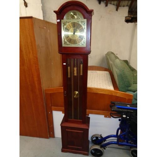 239 - Tempus Fugit Grandfather Clock