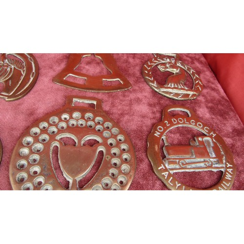 23 - 12X A LARGE COLLECTION OF HORSE BRASSES...