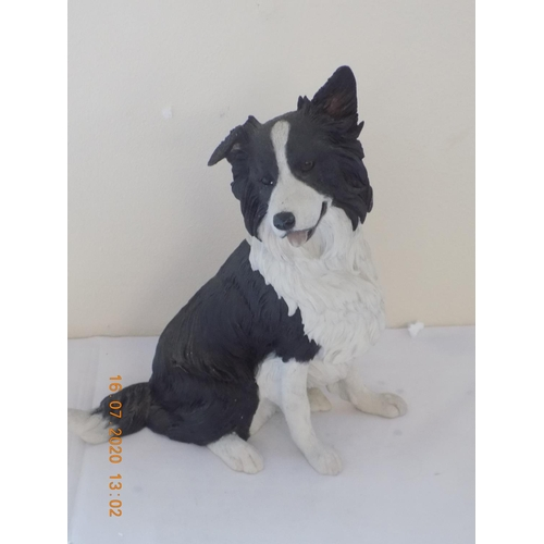49 - Country Artist Best in Show Border Collie 02766...