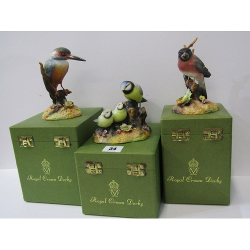 34 - ROYAL CROWN DERBY BIRDS, three boxed figures of Blue Tit & Chicks, Bullfinch & Kingfisher...
