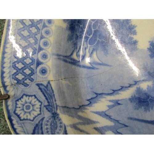 113 - EARLY BLUE TRANSFER,
