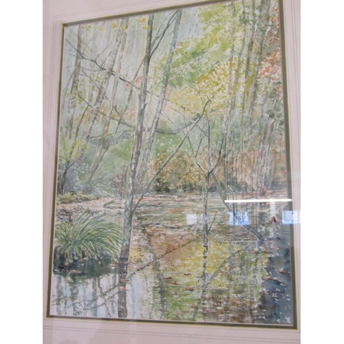 492 - E. CHADDER, Signed water colour 'Woodland Stream' 15.5