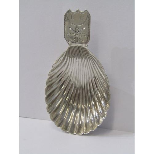 537 - GEORGIAN SILVER CADDY SPOON, bright cut handle with shell bowl