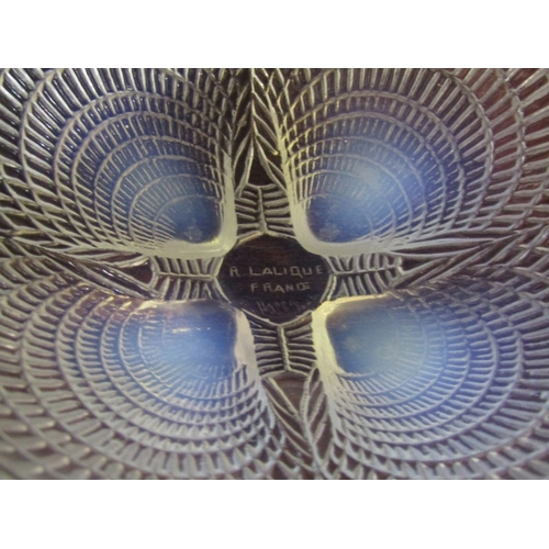 77 - LALIQUE, limited edition signed opalescent dish