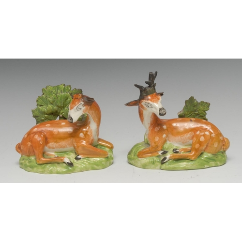 22 - A pair of Staffordshire creamware recumbent deer, stag and doe, in tan with white spots, before boca...
