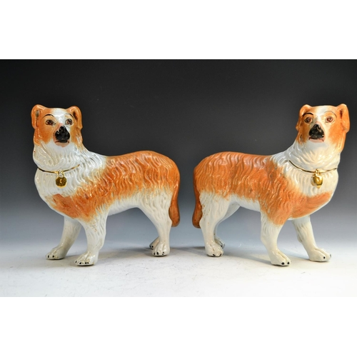 26 - A pair of Staffordshire models of collie dogs, stand to left and right, 30cm long, c.1880...