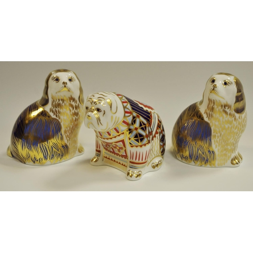14 - A Royal Crown Derby King Charles Spaniel paperweight, first quality, boxed; another, a Bulldog, boxe...